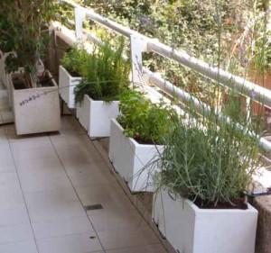 Jardineras en la terraza con huerto