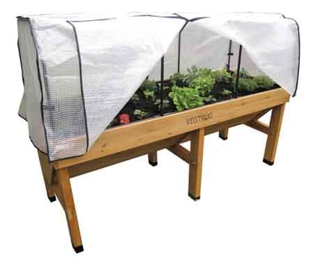 Asociaci n econutre opciones cultivo urbano por huerto city for Asociacion cultivos huerto urbano