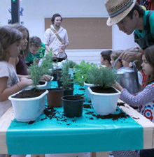 Urban garden workshops